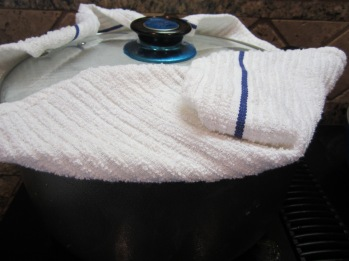 Place a clean dishtowel or 2 layers of paper towel over the pot and cover firmly with a lid to absorb the steam. Cook over medium heat for 10 minutes. Pour butter and remaining oil (2 tablespoons) over the rice. Lower heat to medium low, cook for 50 minutes.