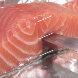 Place a salmon fillet on a cutting board. Keeping your knife parallel to the cutting board.