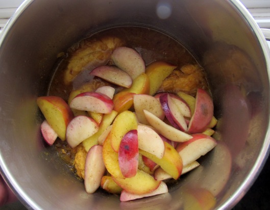 khoresht-hulu-ba-morgh-peach-stew-with-chicken-6